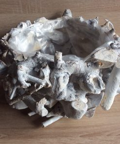Holz Pflanzschale Treibholz weiß gewaschen 34x14 cm, EAN Nr. 4251123308368
